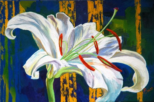 oil painting white lily flowers